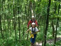 Treetop-Canopy-Walk.jpg