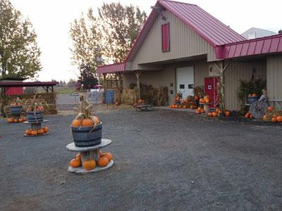 belluz-farm-store.jpg
