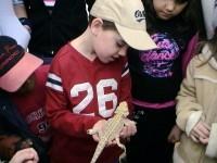 Boy Holding Lizard copy.JPG