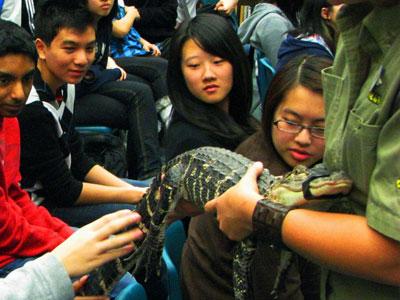 Reptilia-snake-school-fieldtrip.jpg